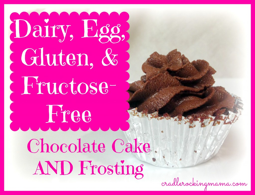 Dairy, Egg, Gluten & Fructose Free Chocolate Cake and Frosting