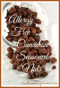 "Allergy-Free Cinnamon Seasoned ""Nuts"" CradleRockingMama.com"