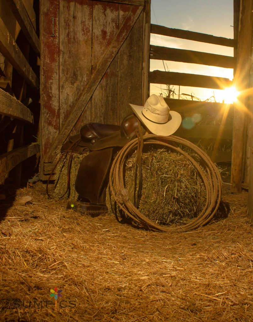 Cowboy Sunset...his other best seller!