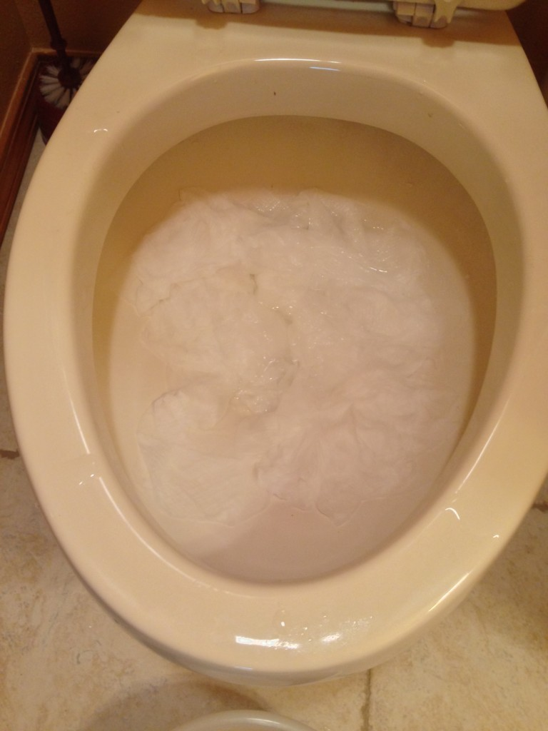 What a whole roll of toilet paper looks like in a toilet bowl after an hour of sitting.