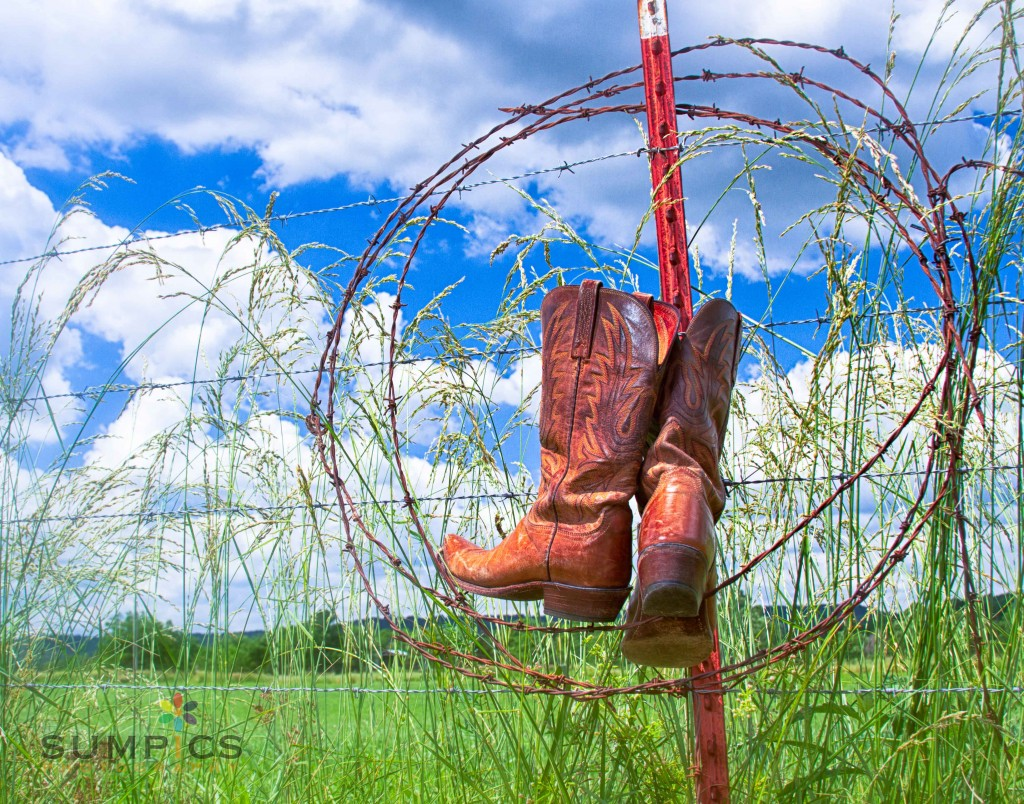 Summertime Boots - these are actually MY cowgirl boots!