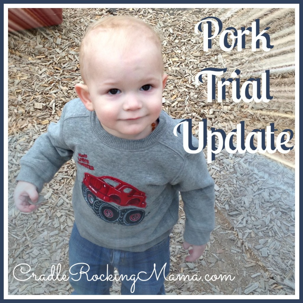 Pork Trial Update cradlerockingmama