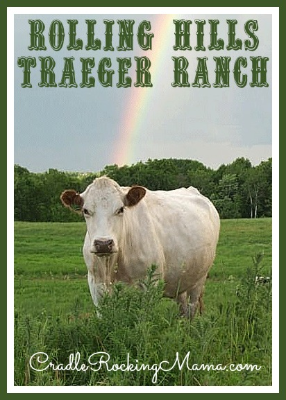 Rolling Hills Traeger Ranch - Lorraine with a Rainbow - cradlerockingmama