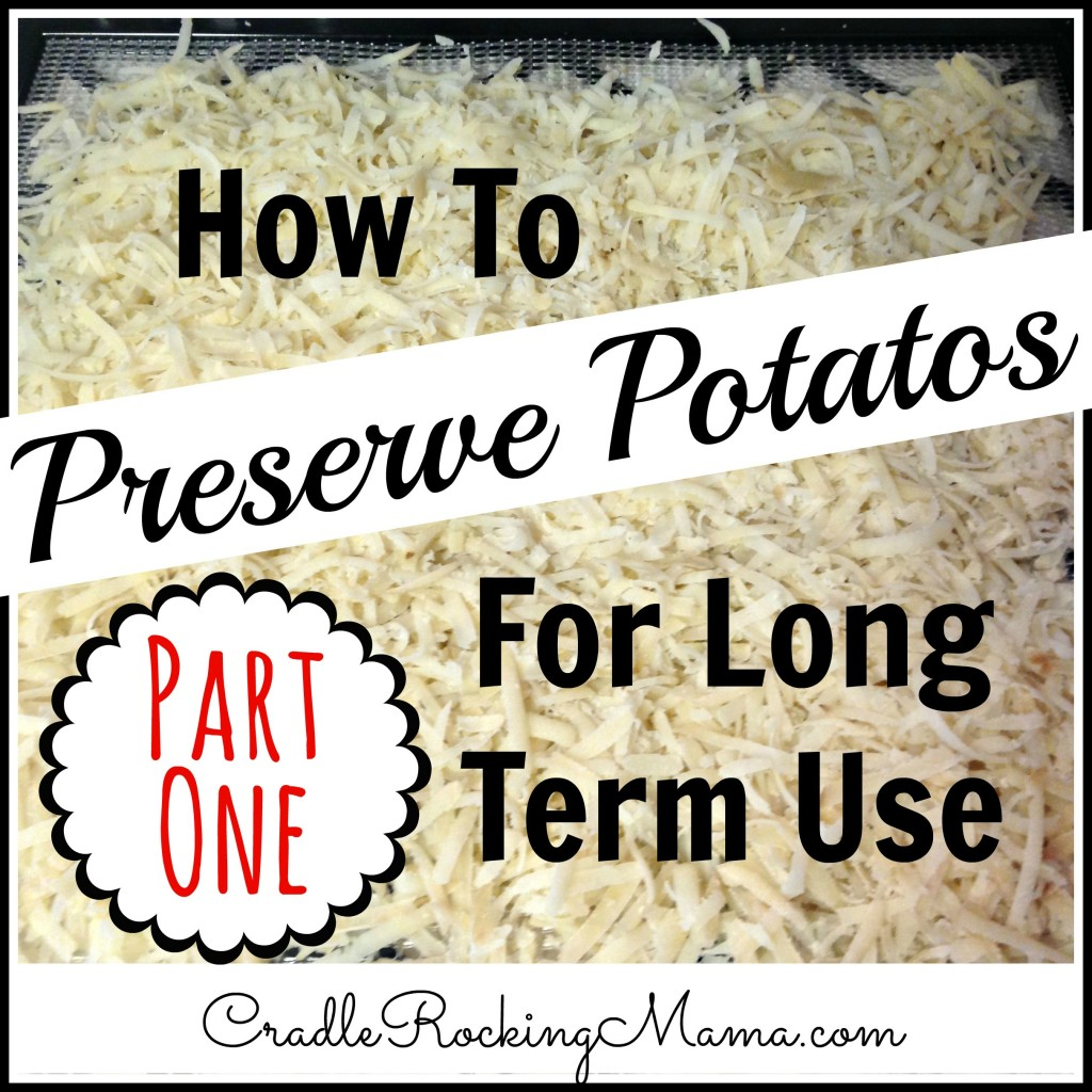 How to Preserve Potatos for Long Term Use Part One CradleRockingMama