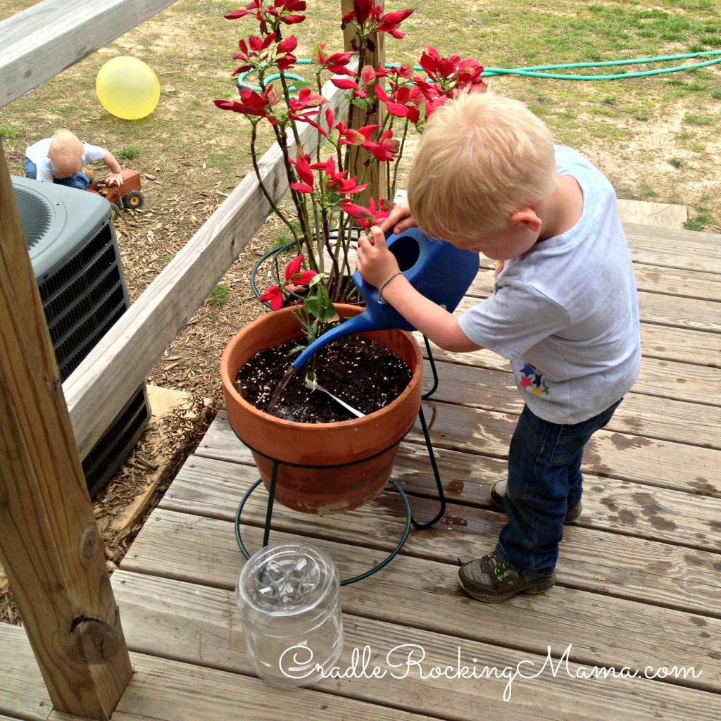 Watering the Plants CradleRockingMama.com