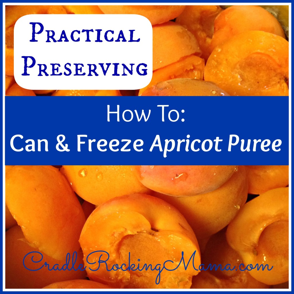 Practical Preserving - How to Can And Freeze Apricot Puree CradleRockingMama.com