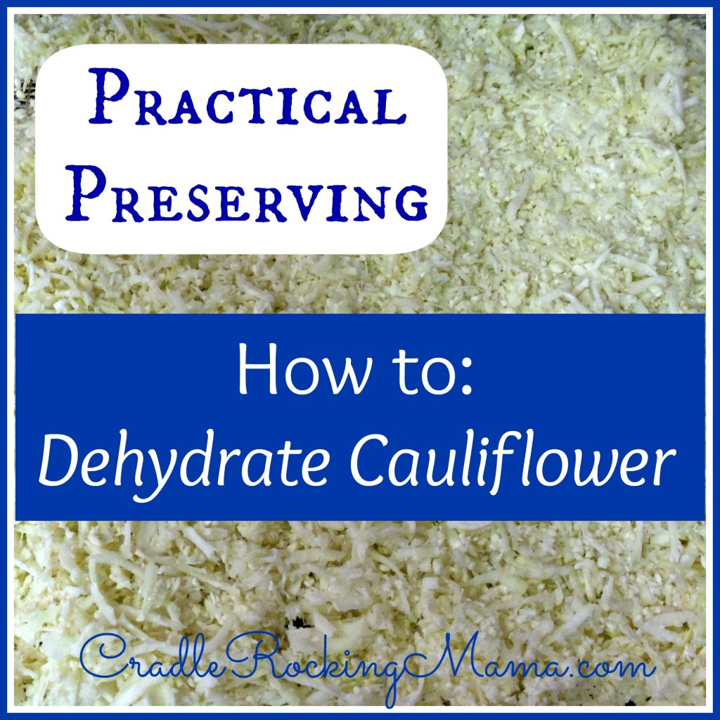 Practical Preserving How to Dehydrate Cauliflower CradleRockingMama.com