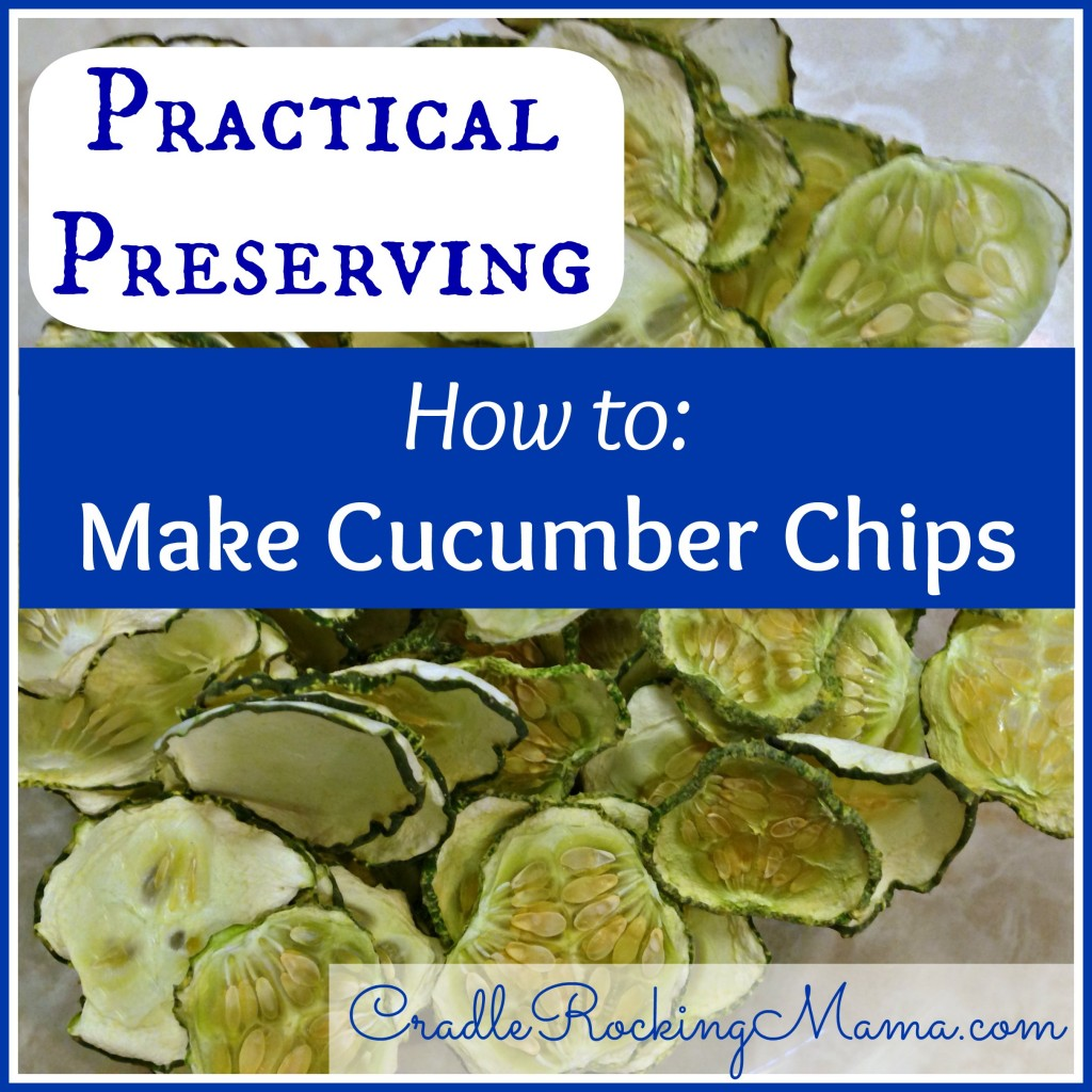 Practical Preserving How to Make Cucumber Chips CradleRockingMama.com