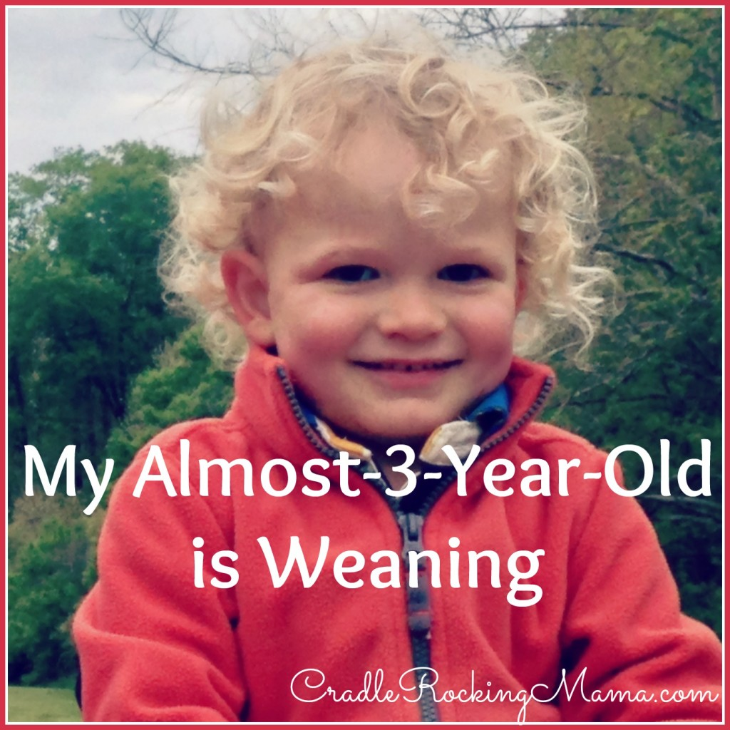 My Almost 3 Year Old Is Weaning CradleRockingMama.com