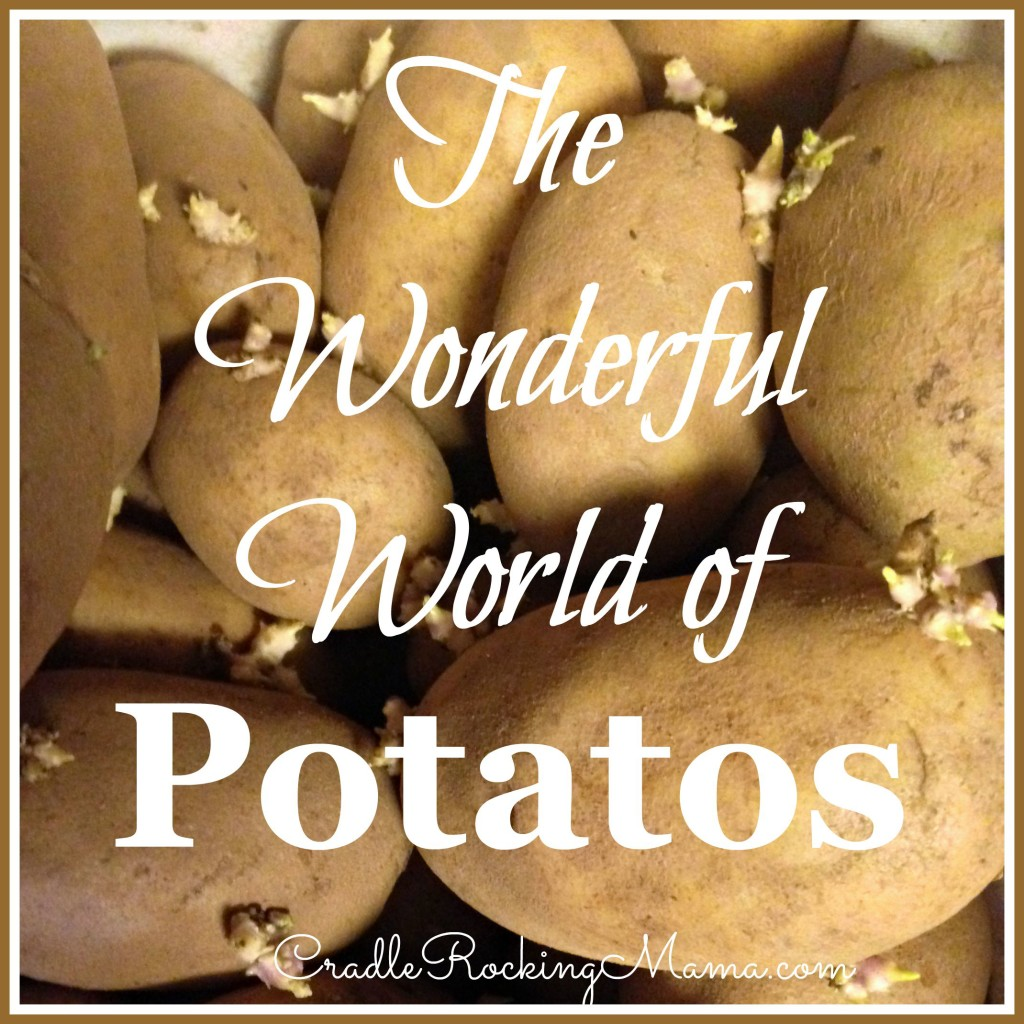 The Wonderful World of Potatos CradleRockingMama.com
