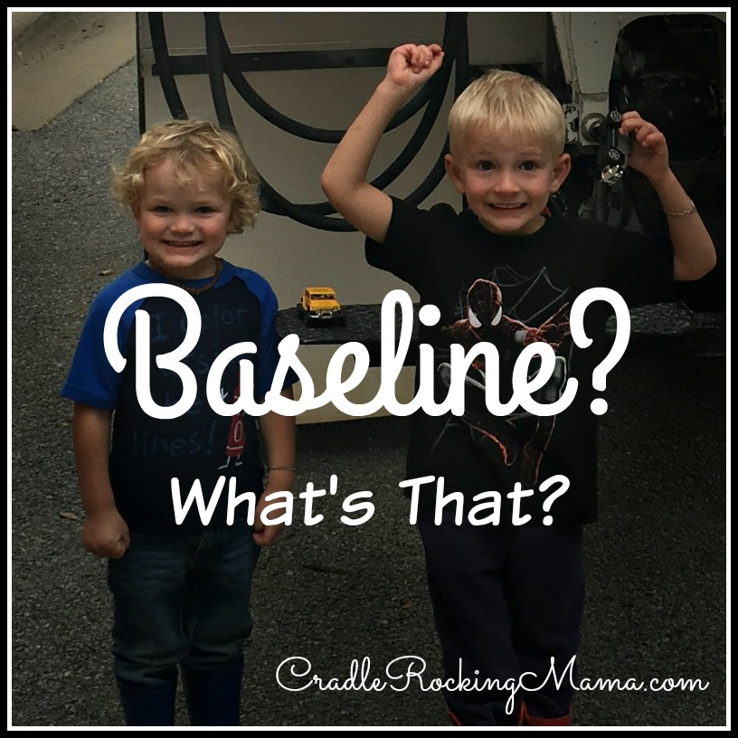 Baseline What's That CradleRockingMama.com
