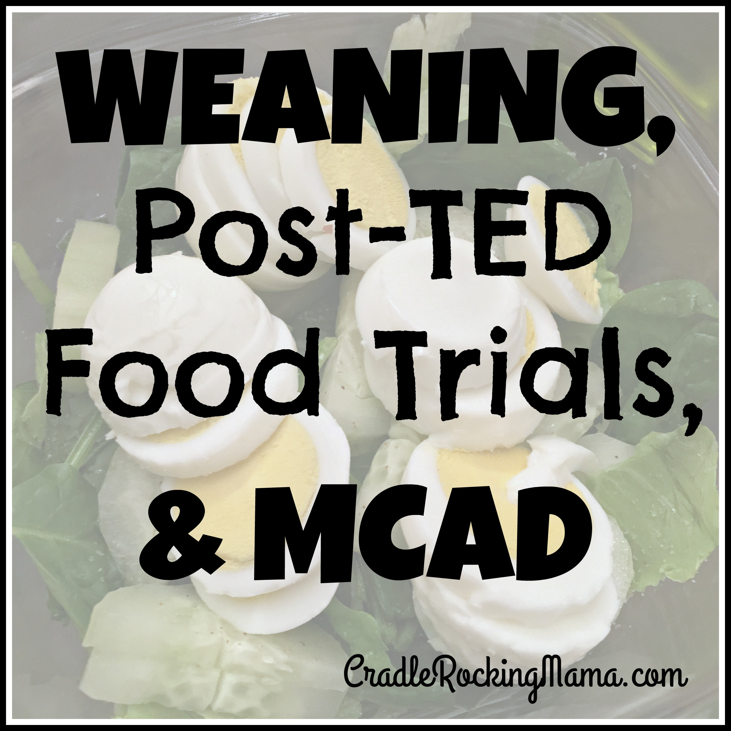 Weaning, Post-TED Food Trials & MCAD CradleRockingMama.com