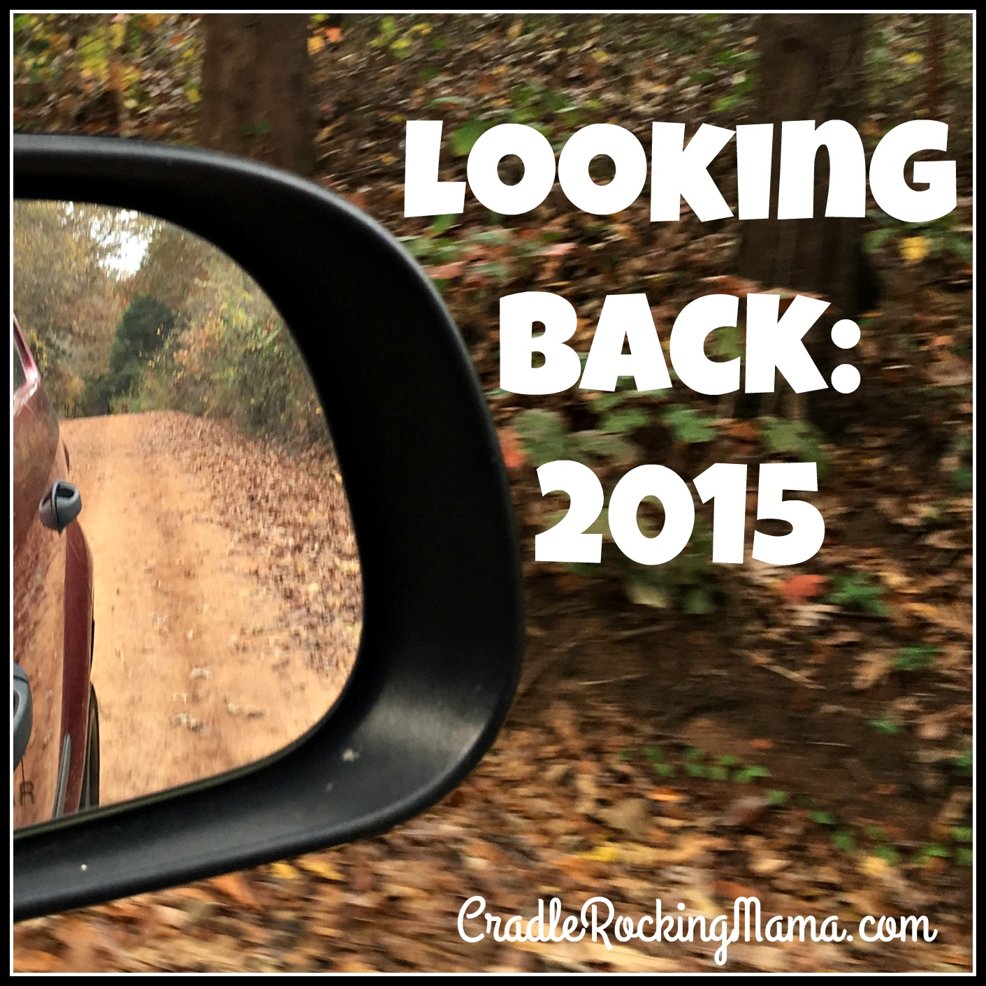 Looking Back 2015 CradleRockingMama.com